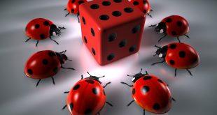 gluecksspiel 310x165 - The Kindred Group: Ein führender Player der Glücksspielbranche